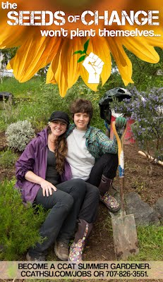 The seeds of a change won't plan themselves; become a CCAT summer gardener!